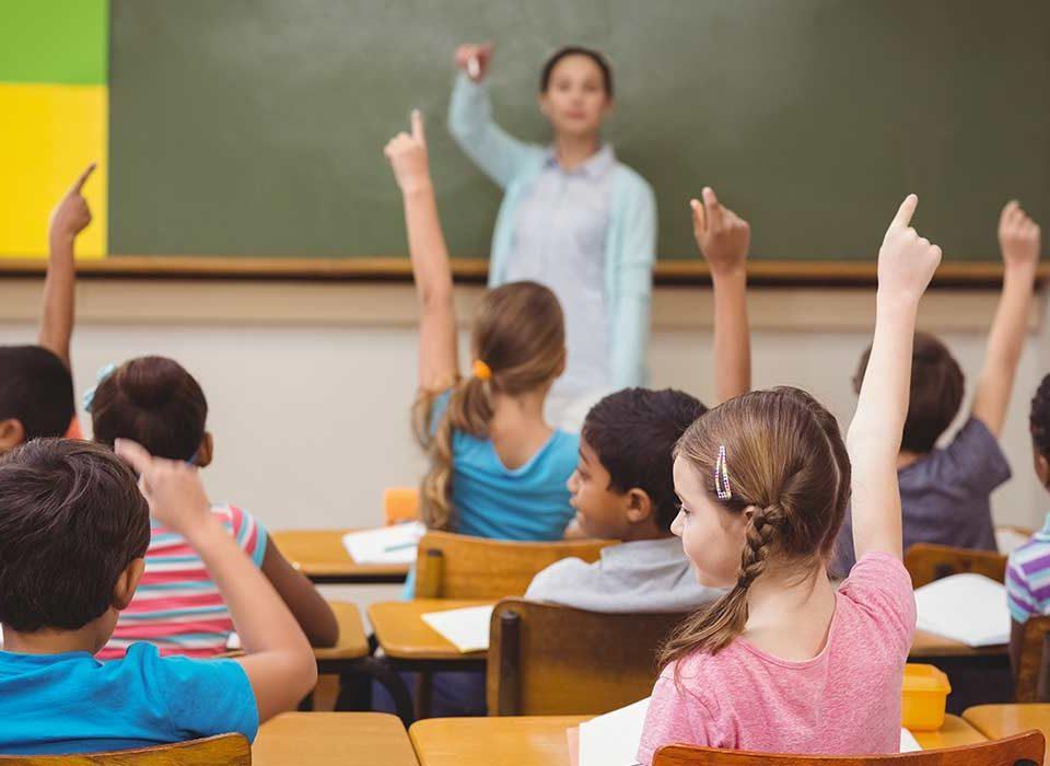 temporizzazione ruolo docenti ricorsi scuola | ricorsi scuola