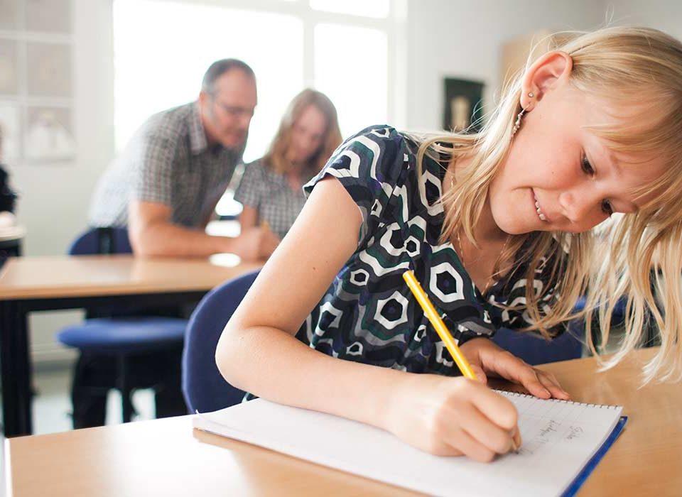 Gli abilitati in Romania possono insegnare in Italia - Ricorsi Scuola