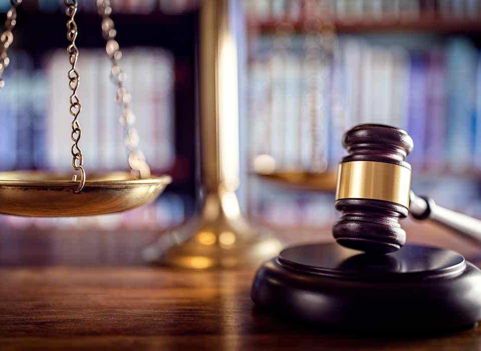 vittoria tribunale di cosenza laurea e 24 cfu costituiscono titolo abilitante | ricorsi scuola